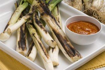 Calçots & Romesco Sauce